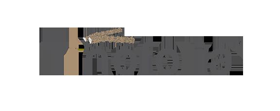 logo-tinofolia